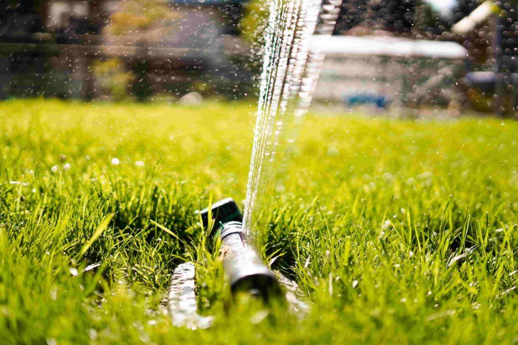 Rasen wässern mit Sprinkler