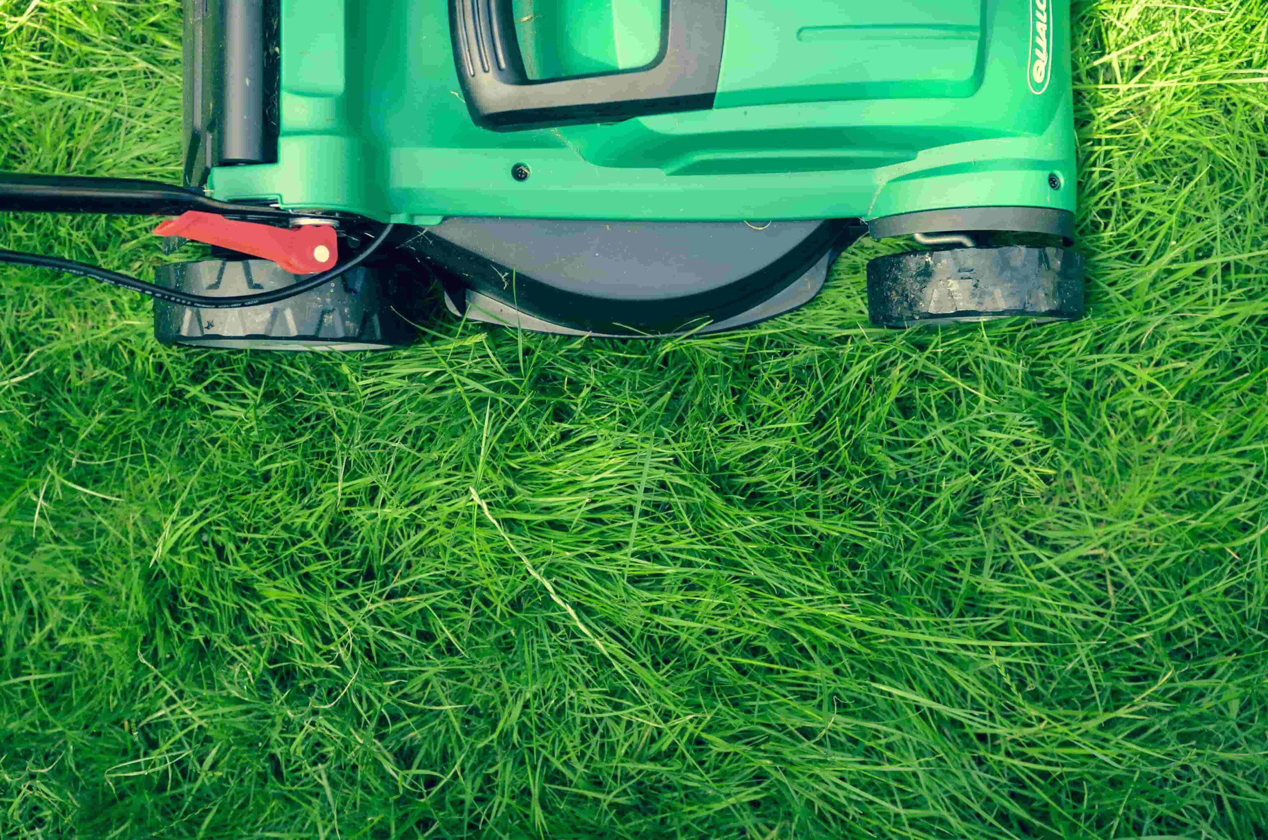 Du mähst falsch! – Die 7 größten Fehler beim Rasenmähen